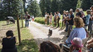 Noiraigue: les animaux du refuge des Oeillons auront leurs concerts du 1erAoût