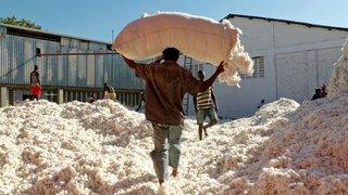 «Fair Traders», du cinéma engagé qui fait du bien