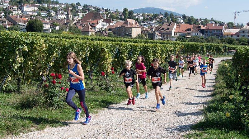 C'est entre les plans de vignes que La Vendangeuse déroulera son tracé ce samedi.