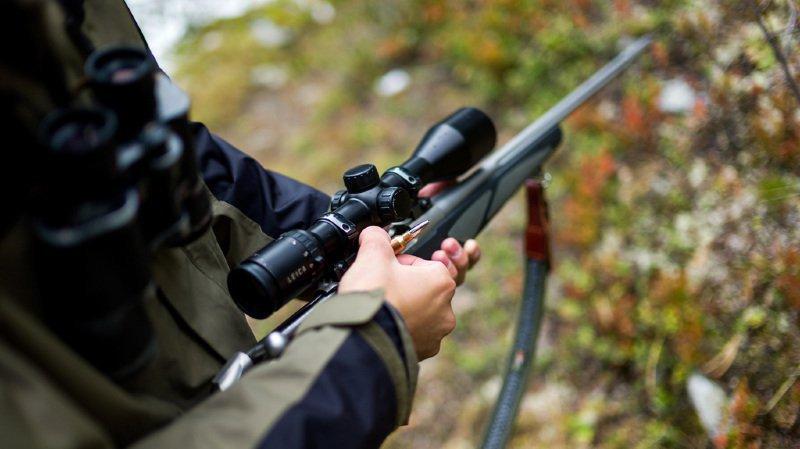 La victime aurait été atteinte par un coup de feu tiré par le fusil d'un autre chasseur. (Illustration)