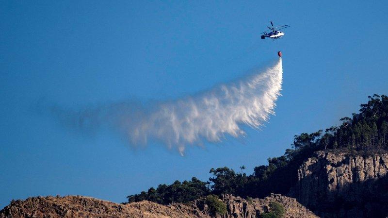 Espagne: l'incendie de Grande Canarie qui menaçait des réserves naturelles a été circonscrit