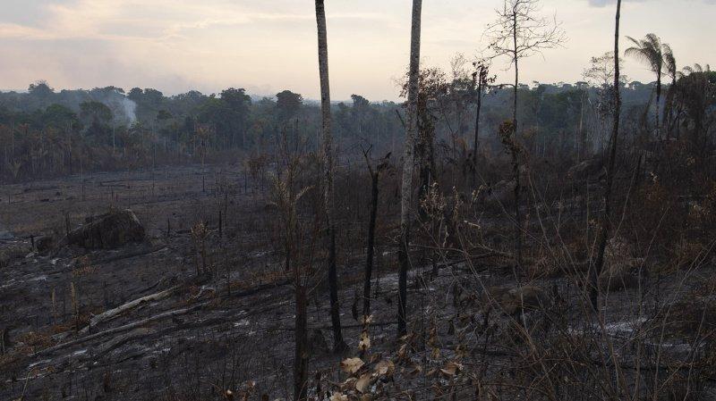 Amazonie: Caritas Suisse débloque 250'000 francs pour les victimes des incendies