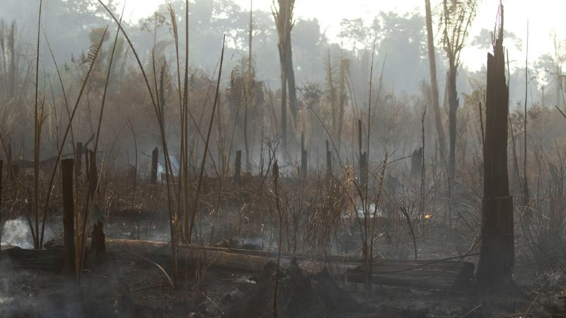 """""""Personne n'a besoin d'une nouvelle initiative sur l'Amazonie"""", a abondé le chef de la diplomatie brésilienne, Ernesto Araujo, faisant valoir qu'il existait déjà des mécanismes sous l'égide de la Convention du climat de l'ONU """"pour financer le combat contre la déforestation, et pour reforester""""."""
