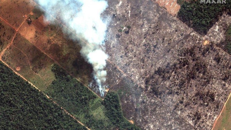 Jair Bolsonaro, président «pyromane»