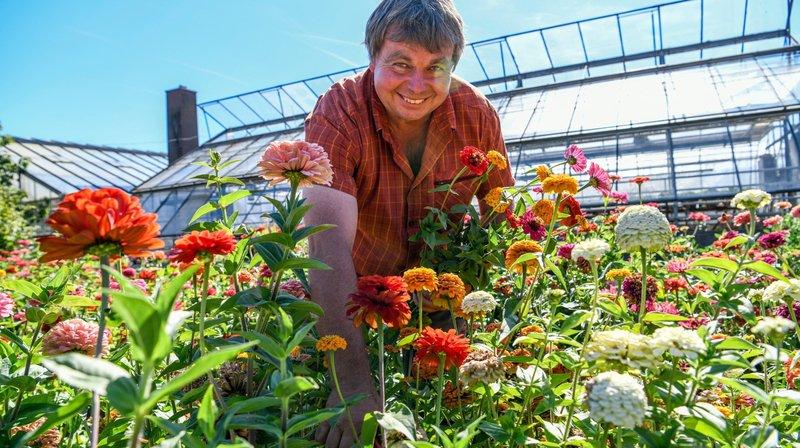 Culture de fleurs: la concurrence est rude pour les producteurs neuchâtelois