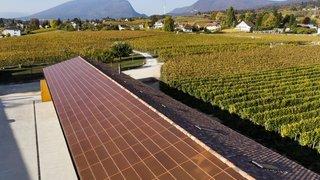 Et si nos entreprises passaient enfin au solaire?