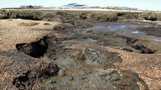 Russie: une bouteille à la mer retrouvée 50 ans plus tard en Alaska
