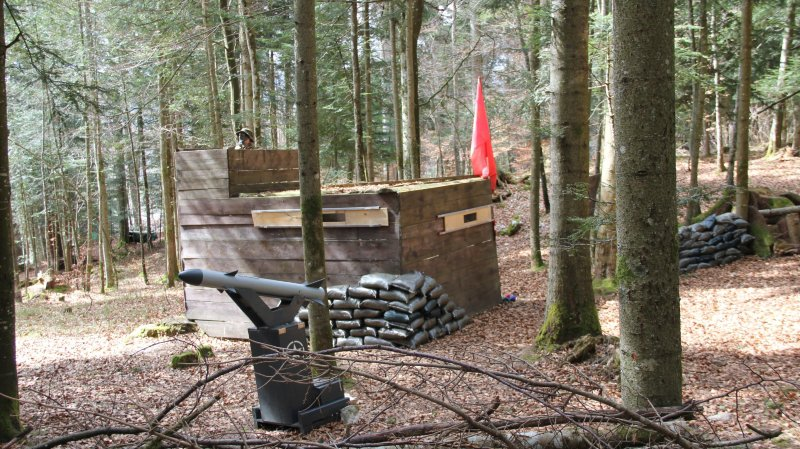 Partie CAMN - Terrain forestier