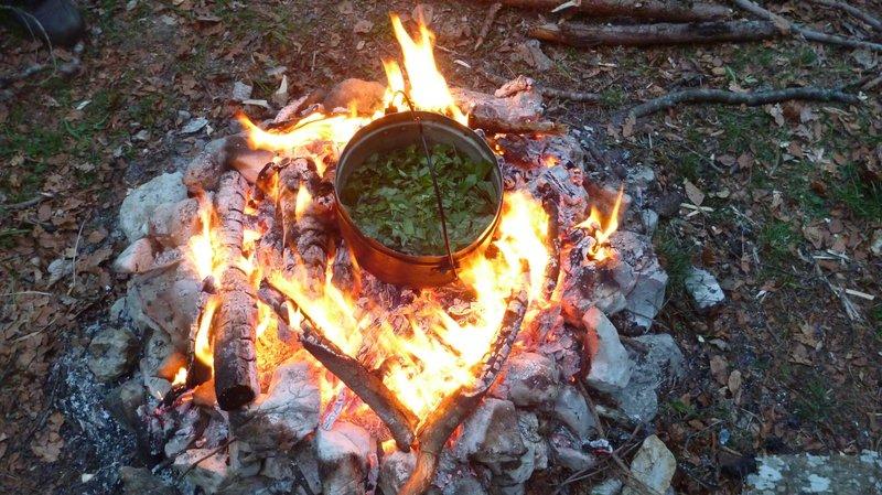 Les participants prépareront leur repas à partir de plantes sauvages, cuites sur un feu allumé sans allumettes.