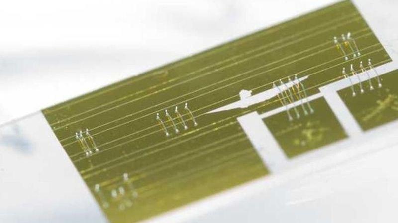 Le spectromètre infrarouge miniature tient sur une puce électronique.