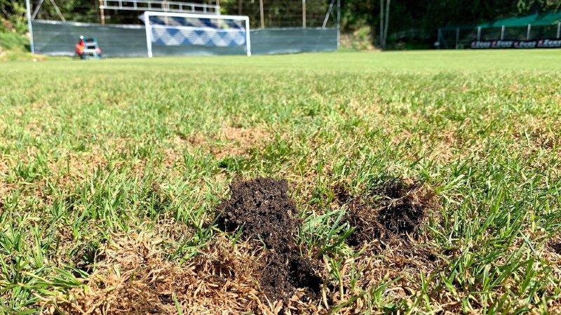 Le terrain du FC Auvernier réouvert après trois semaines de fermeture