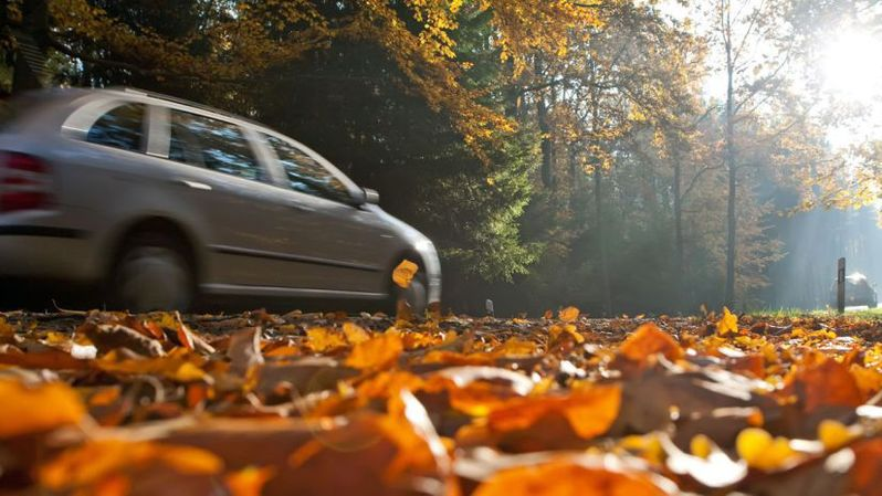 En automne, les conditions de circulation sur les routes peuvent être piégeuses.