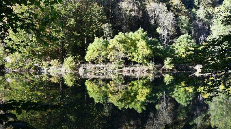 Le Centre nature des Cerlatez et le Parc du Doubs se rapprochent