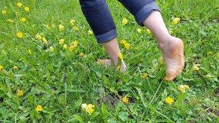 Vallée de La Sagne: marcher pieds nus, c'est le pied!