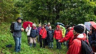 Val-de-Ruz: une balade à la découverte des arbres et de leurs mystères