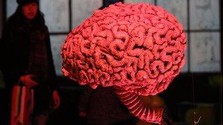 Santé: notre cerveau, comme un thermostat, peut amplifier ou diminuer la douleur