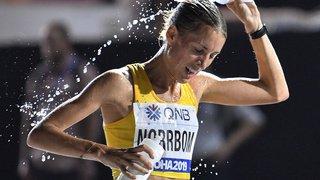 Jeux olympiques de Tokyo 2020: pour éviter la canicule, certaines épreuves pourraient être déplacées à Sapporo