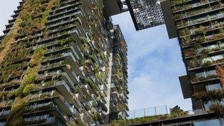 Révolution verte à Sydney