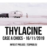 Thylacine en concert
