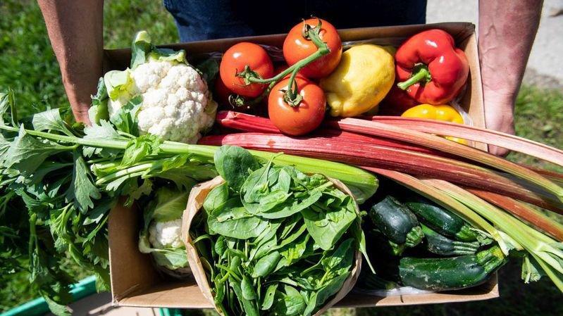 La part des produits bio dans le panier alimentaire des Suisses ne cesse pas de progresser.