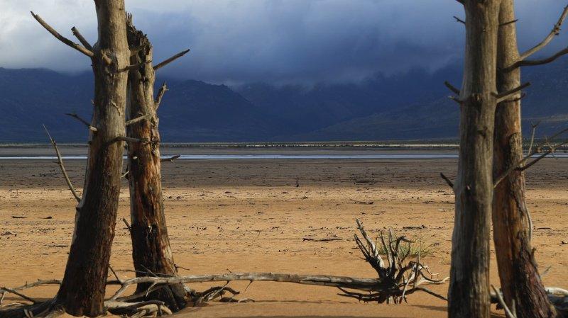 Au cours des cinq dernières années, l'Afrique australe a connu une seule année de précipitations normales. La sécheresse a causé de gros dégâts sur les récoltes. (illustration)