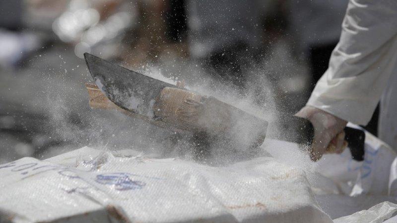 Japon: saisie record de cocaïne dans le port de Kobe