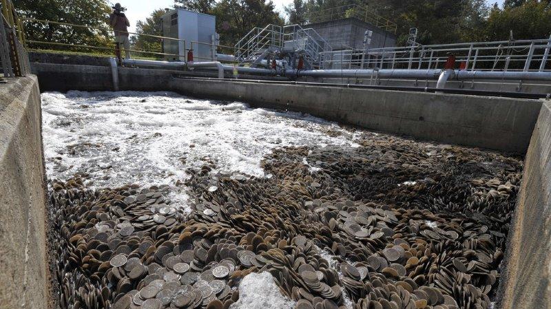 Les grandes stations d'épuration seront modernisées, afin de permettra la réduction drastique des quantités de micropolluants rejetés dans les eaux usées par les ménages et les entreprises.