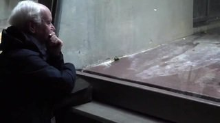 Les chimpanzés de plus en plus nombreux au zoo de Bâle