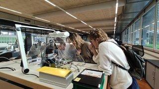 Les enseignants des Franches-Montagnes rendent visite à des entreprises du Noirmont