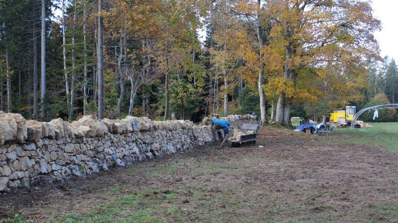 Pas moins de 263 mètres de murs ont été restaurés cette année sur la montagne de Cernier.