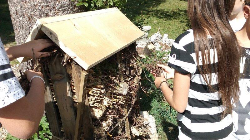 Des élèves se sont par exemple attelés à la construction d'un hôtel à insectes à Mont-Soleil.