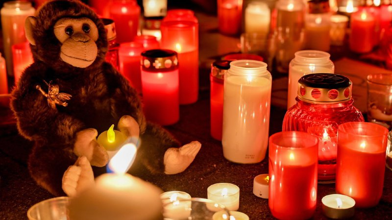 Allemagne: une mère et ses filles à l'origine de l'incendie qui a tué des dizaines de singes
