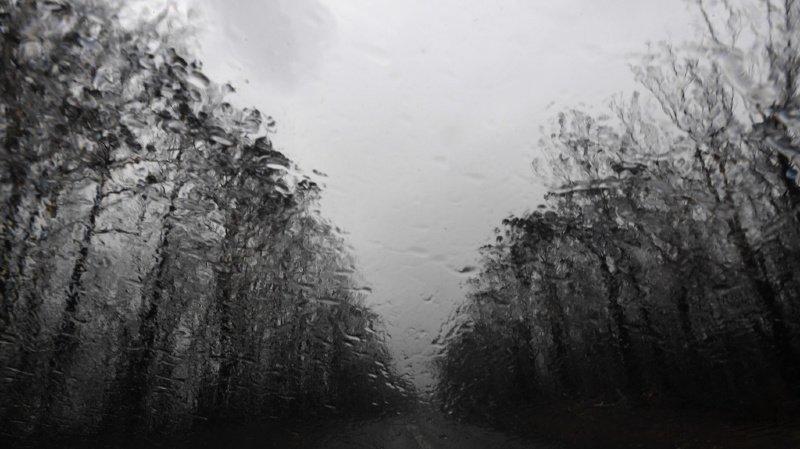 Australie: la pluie tombe enfin sur les incendies