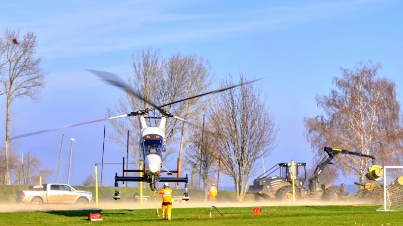 Un hélicoptère spécial à La Neuveville pour éliminer les peupliers affaiblis
