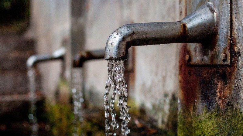 Pesticides: le canton de Berne demande l'interdiction immédiate du chlorothalonil