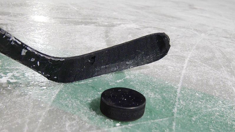 Hockey: Suspension pour Wingels, Fehr, Goi et Schneeberger