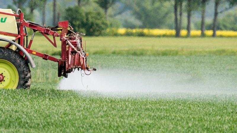 Lutte musclée souhaitée contre les pesticides