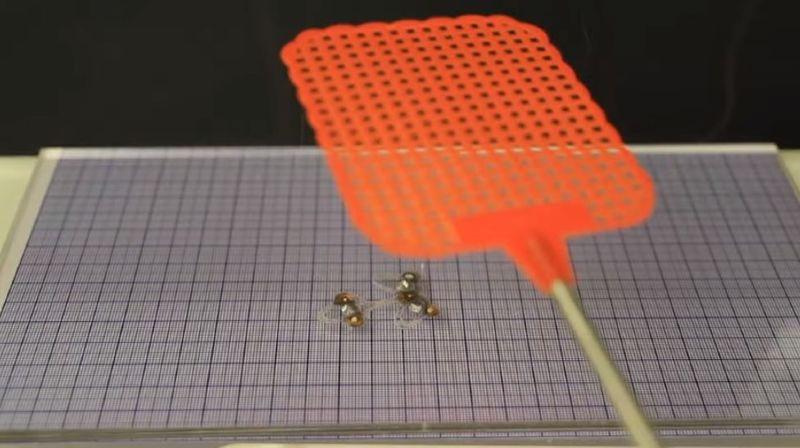 L'EPFLprésente DEANsect, un robot-insecte ultraléger