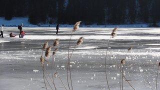 Lac des Taillères: attention, la glace est encore trop fragile
