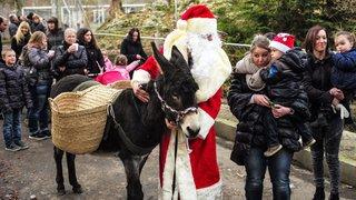 La Chaux-de-Fonds: Noël au Bois du Petit-Château