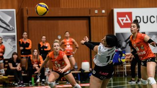 Volleyball: le NUC reçoit Guin avec un désir de revanche