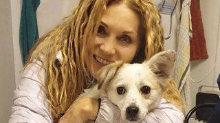 Le Locle: un chien perdu déclenche une polémique sur les réseaux sociaux