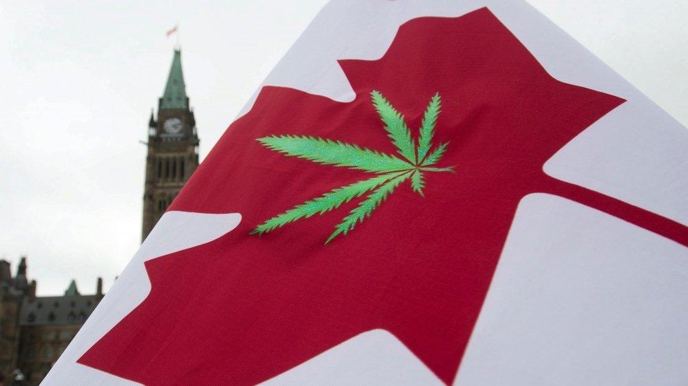 Presque un an et demi après la légalisation du «pot», comme les Québécois appellent le cannabis,  le marché s'effondre.