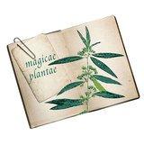 Mon herbier de plantes magiques