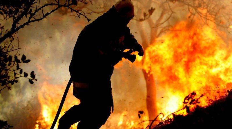 Jura: en 2019, les dégâts dus aux incendies ont été lourds et très coûteux