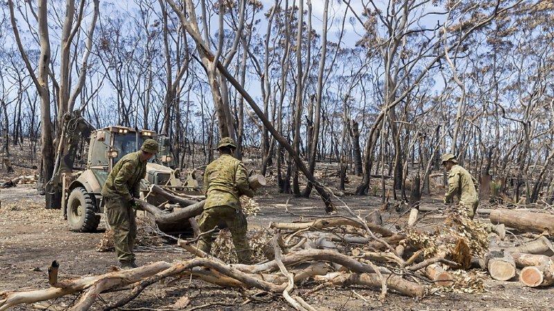 Plus de 2500 habitations sont parties en fumée et environ un milliard d'animaux auraient péri dans cette catastrophe sans précédent.