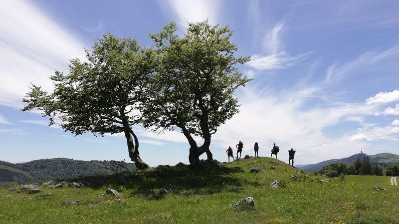 Le Parc Chasseral pourrait inclure Val-de-Ruz et une partie de Neuchâtel
