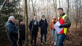 Neuchâtel: retrouver son chêne, 20 ans après