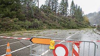 Météo: arbres déracinés et lignes perturbées suite aux vents tempétueux