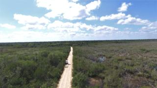 Un corridor biologique voit le jour au Belize grâce au Papiliorama